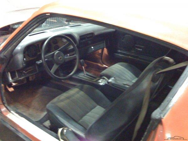 1978 Camaro door opening.jpg
