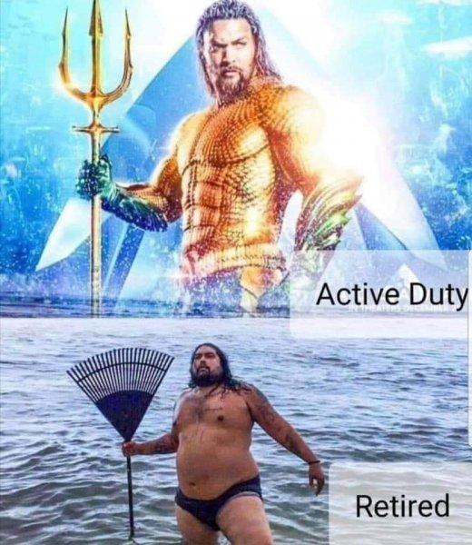 Active duty - retired.jpg