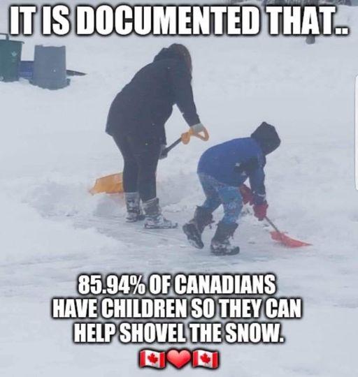 Canadians shovelling snow.jpg