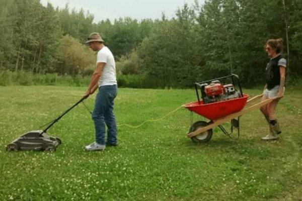 electric lawnmower.jpg