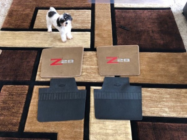 Repo Floor Mat Back Template.jpg