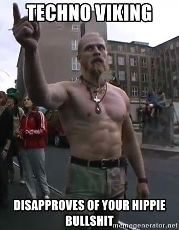 techno-viking-disapproves-of-your-hippie-bullshit.jpg